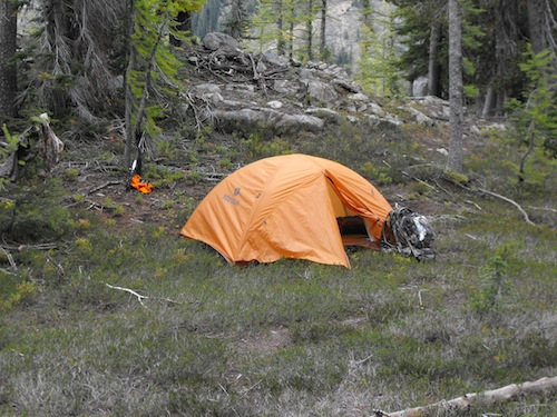 Single tent, orange canopy